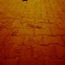 nistu şevnis şevnistu keznis şevniskez jasnis bernis jasnisber ros_lis_ji_fan roslisjiailesi lisamanoban kimrose kimjennie kimjisoo teamady teamroslisji fyp keşfet  👑•jasmin'den remikit keşfet