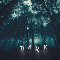 picsart darkness mystery forest