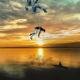 freetoedit myedit sunset birds lake summer picsart ircelevating elevating flying flyingaway