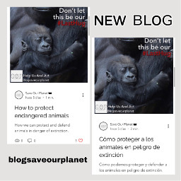 savetheoceans savetheearth saveourplanet ourplanet change help fyp remember news page interesting nature oceans animals climatechange plastic nomoreplastic blogsaveourplanet saveourplanetoficial newblog