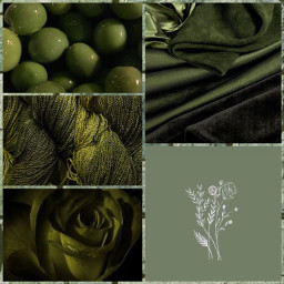 foreveraestheticchallenge olivegreen green pastelgreen collage wallpaper cute aesthetic follow like madebyme picsart unique special