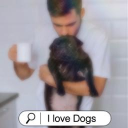 freetoedit search searchbar blur heypicsart