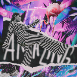 fccelebrateyourcreativity celebrateyourcreativity madewithpicsart madebyme myedit flamingo colorful neon tropical tropicalleaves tornpaper pink makeawesome glitter