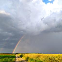 olesya_haiduk rainbow rain field colours pcoutside outside