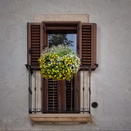 balcone fiori campodigiove