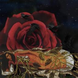art rose fridakahlo unibrow_queen frida paintingstyle freetoedit
