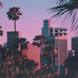 city sunset tree losangeles view palmtrees sky pink purple blue dusk photography landscape urban shadow trees building buildings red aesthetic retro background freetoedit skyline
