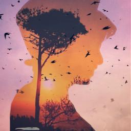 freetoedit doubleexposure madewithpicsart picsart silhouette doublexposure