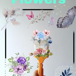 freetoedit flowers ircmagicbrush magicbrush