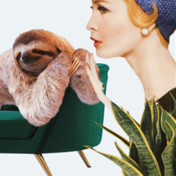 whisper secret sloth woman