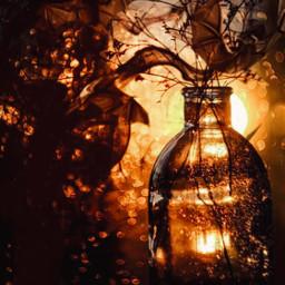 smoke bottle bats potion magic brown amber twilight colorfulsmoke