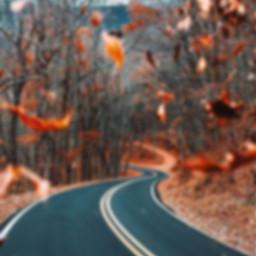 aestheic fall autumn autumninmycity