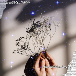aesthetic flower picsart replay aestheticquotes myeditnostealing incredible_isabel adcre-cloud isabel-helps   𝑇ℎ𝑎𝑛𝑘 freetoedit local adcre isabel