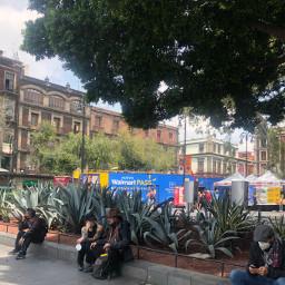 freetoedit streetshot streetphoto gardens gardenshots people