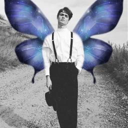 freetoedit butterfly butterflywings aesthetic blackandwhite
