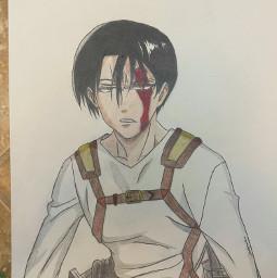 levi aot ackerman art anime drawing