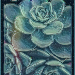 freetoedit designbyjaz remix succulents nightsky emboseffect