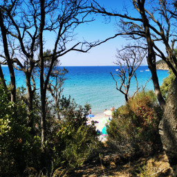 landscape nature bluesky bluesea beach trees sand tyrrheneansea italy myphotography