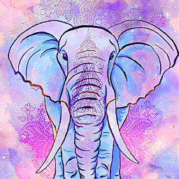 freetoedit glitter sparkle galaxy watercolor paint elephant animal tribal mandala flowers floral colorful pastel cute kawaii shimmer aztec overlay background wallpaper
