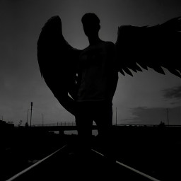 freetoedit fyp engel wings