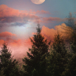 freetoedit mastershoutout sky clouds moon pinetrees