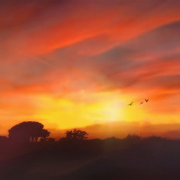 freetoedit mastershoutout sunset landscape sky fallcolors colorful photoedit birds madewithpicsart clonetool remove