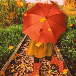 freetoedit leaves fall autumn path nature girl umbrella kid child orange yellow forest woods tree cloudsandsky