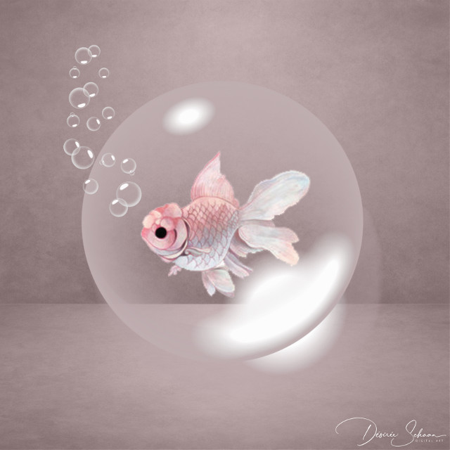 #bubbles #bubble #fish #rosafish #grey #surreal #surrealart #livinginabubble