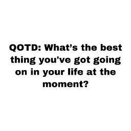 quotd questionoftheday