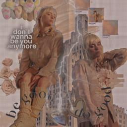 n1suhki billieeilish freetoedit complex beige aesthetic collage