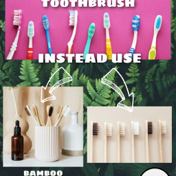 freetoedit savetheoceans savetheearth saveourplanet ourplanet change help fyp remember news page interesting nature oceans animals climatechange plastic nomoreplastic blogsaveourplanet saveourplanetoficial plastictoothbrush bamboo