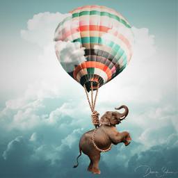 freetoedit ballon elephant sky clouds surreal surrealart surrealism srcflyingairballoons flyingairballoons