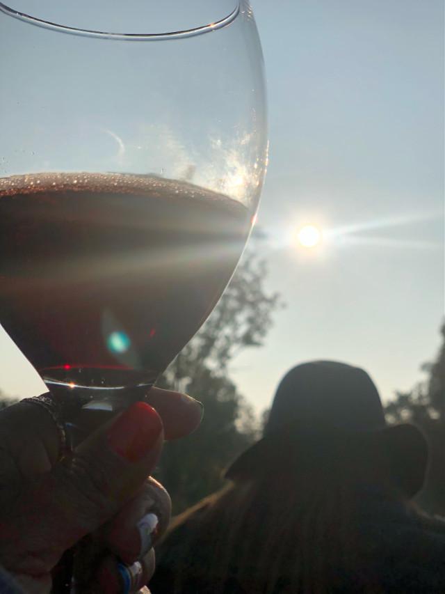 #redredwine #redredwinemakesmefeelsofine #sunlight #dayout #travel #photography #happy