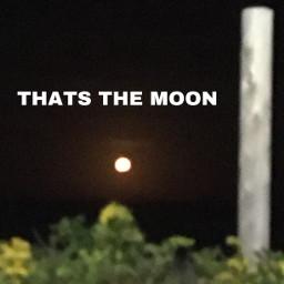 e beach moon