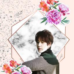 freetoedit remix wallpapers superjunior kingsofkpop e.l.f💙 kyuhyun e