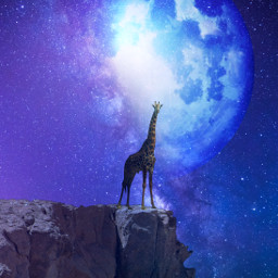 freetoedit giraffe sky moon planet starsa