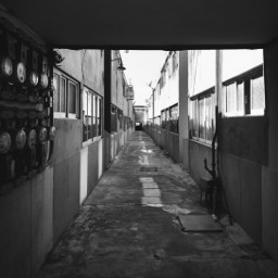 bnw local