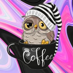 owl inacup sleepy black pink freetoedit local