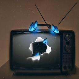 magica butterflies tv retrô freetoedit picsart irconretrotv onretrotv