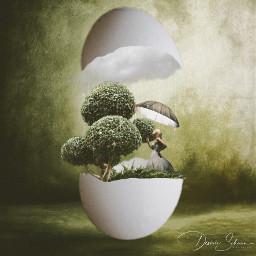 rain umbrella woman egg tree surreal surrealart