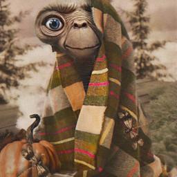 freetoedit mastershoutout et halloween blanket cute fall cozy warm madewithpicsart