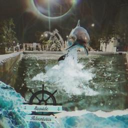 edit dolphin effect water night freetoedit