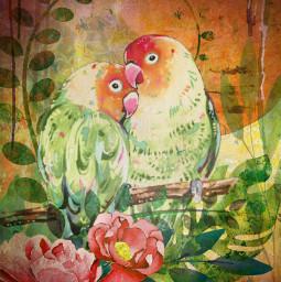lovebirds digitalcollage mixedmedia digitalcollageart originalart tinkertailorartist mypieceofpeace mixedmediaart mixedmediaartist artistoninstagram local