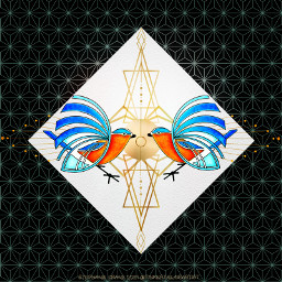 geometry lovebirds tinkertailorartist mypieceofpeace shop freetoedit