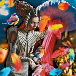 birdwoman madewithpicsart heypicsart freetoedit local