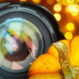 photography october hellooctober pumpkin bokeh lens autumn reflection landscape yellow freetoedit local