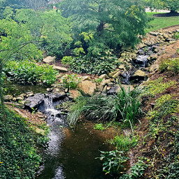 freetoedit  ꧁dᴀɪʟʏ꧂ 66 hashtags edit insta instagram pic picture nature new follow water waterfall green trees stream freetoedit local