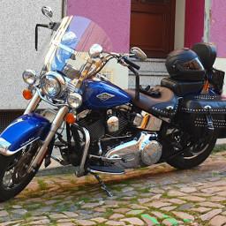 harleydavidson harley motorbike cool cruisin iwantone local