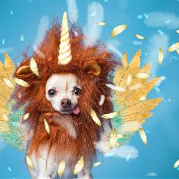 iammagical tinkertailorartist mypieceofpeace freetoedit srcunicornhorn unicornhorn