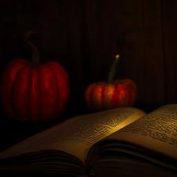photography pumpkins book stilllife darkmood october halloween flatlay freetoedit local